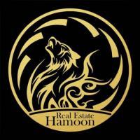 شرکت هامون