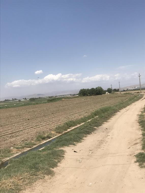 10 هزار متر زمین کشاورزی